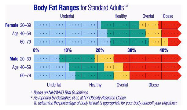 body-fat-ranges1